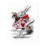 Le lapin blanc cartes postales