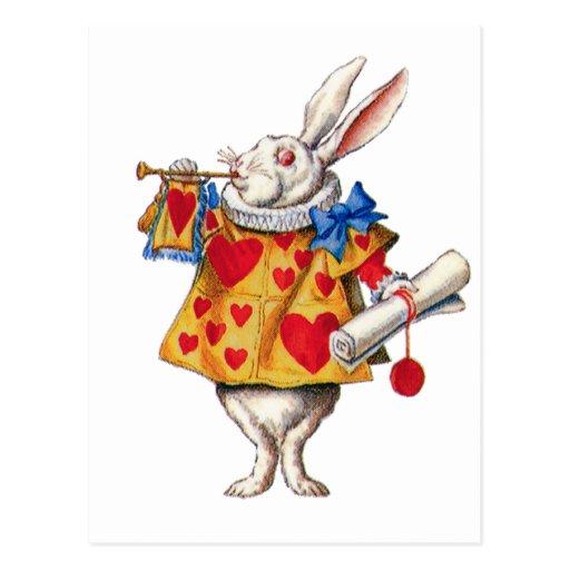 le lapin blanc d 39 alice au pays des merveilles carte postale zazzle. Black Bedroom Furniture Sets. Home Design Ideas