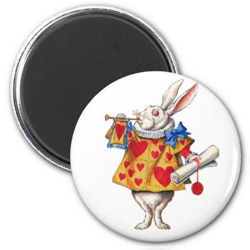 le lapin blanc d 39 alice au pays des merveilles magnets pour r frig rateur zazzle. Black Bedroom Furniture Sets. Home Design Ideas