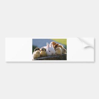 Le lapin de mère adopte quelques poussins autocollant pour voiture