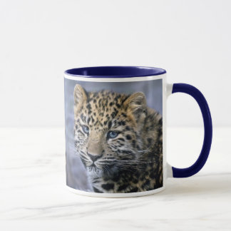 Le léopard CUB attaquent Mug