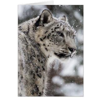 Le léopard de neige se tient dans la neige carte de vœux