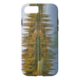 Le lever de soleil illumine des arbres sur un coque iPhone 8/7