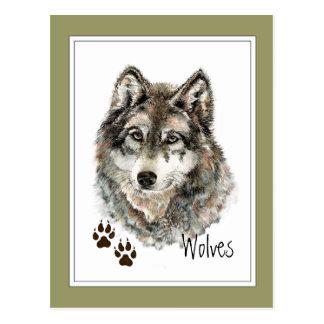 Le loup gris d'aquarelle originale dépiste carte postale