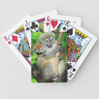 Le Madagascar, Andasibe, Ile Lemuriens aux., mère Jeu De Poker