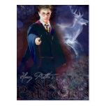 Le mâle Patronus de Harry Potter Cartes Postales