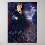 Le mâle Patronus de Harry Potter Posters
