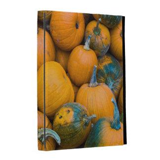 Le Massachusetts, Salisbury, citrouilles, automne Coques iPad