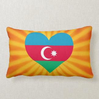Le meilleur Azerbaïdjan mignon de vente Coussin Décoratif