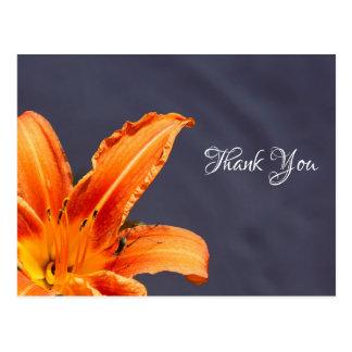 Le Merci a compensé la carte postale d'hémérocalle