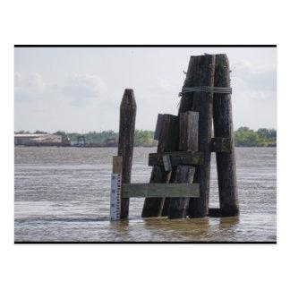 Le Mississippi inondé Carte Postale