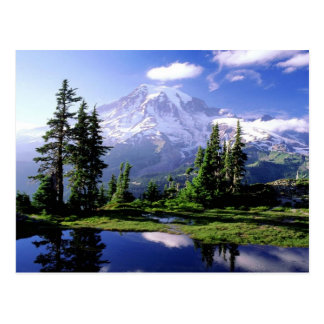 Le mont Rainier Washington Carte Postale