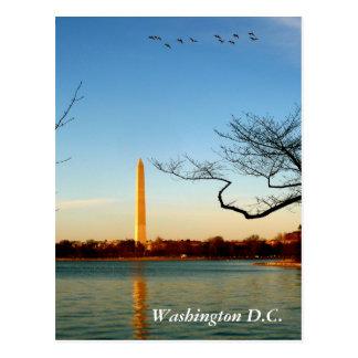 Le monument de Washington Cartes Postales