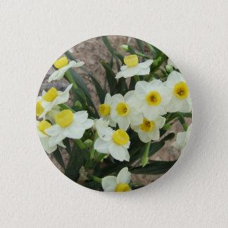 Le narcisse blanc fleurit le bouton badge