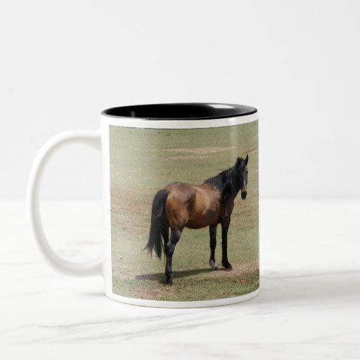Le Navajo Mustang~SAVE par VIE, ADOPTENT une tasse