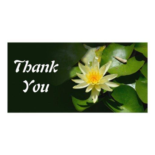 le nénuphar vous remercient carte photo cartes avec photo