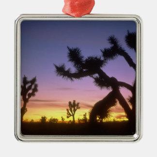 LE NEVADA. LES Etats-Unis. Brevifolia de yucca Ornement Carré Argenté