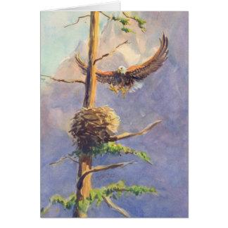 Le NID d'EAGLE par SHARON SHARPE Cartes