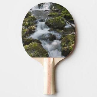 Le Nouveau Brunswick, Canada. Dickson tombe dans Raquette Tennis De Table