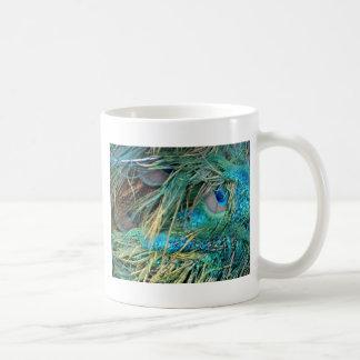 Le paon masculin fait varier le pas du bleu et du mug