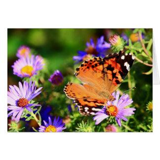 Le papillon sur l'aster fleurit la carte de
