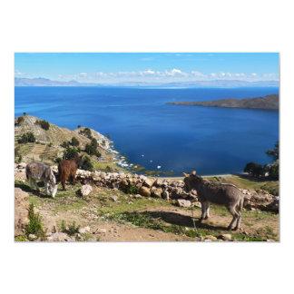 Le paradis des ânes carton d'invitation  12,7 cm x 17,78 cm