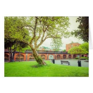 Le parc de St Patrick Carte De Vœux