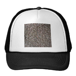 Le pavé lapide des chapeaux casquette trucker