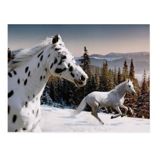 Le pays des merveilles d'hiver carte postale