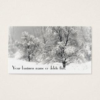 Le pays des merveilles d'hiver cartes de visite