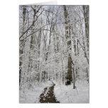 Le pays des merveilles d'hiver cartes de vœux