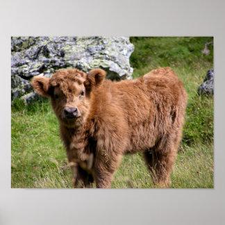 Le pays drogué Cattle Posters
