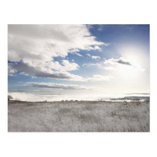 le paysage de la neige a couvert le champ herbeux carte postale