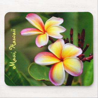 Le Plumeria de Maui fleurit Mousepad Tapis De Souris