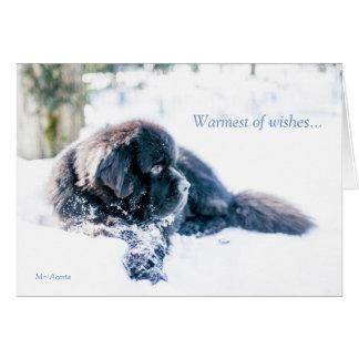 Le plus chaud des souhaits… carte de vœux