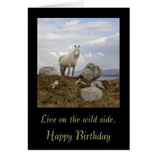 Le poney de Connemara, vivent du côté sauvage. , H Carte De Vœux