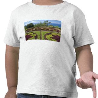 Le Portugal île de la Madère Funchal Botanique T-shirt