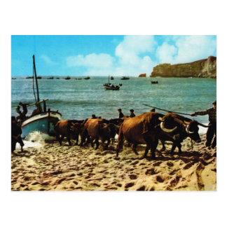 Le Portugal vintage,    Nazare, échouant des Carte Postale