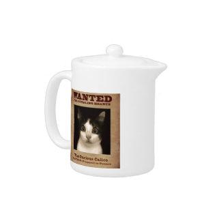 Le pot curieux de thé de chaton de calicot
