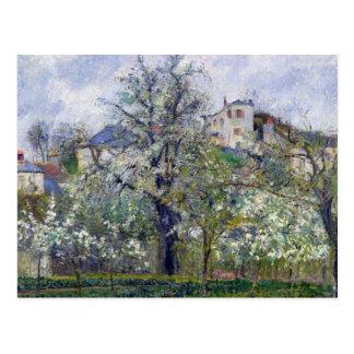 Le potager avec des arbres dans la fleur carte postale