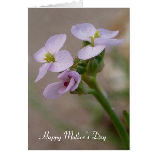 Le pourpre fleurit la carte du jour de mère