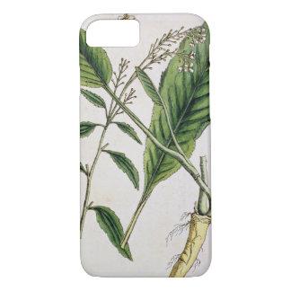 """Le raifort, plaquent 415 """"d'un de fines herbes coque iPhone 7"""