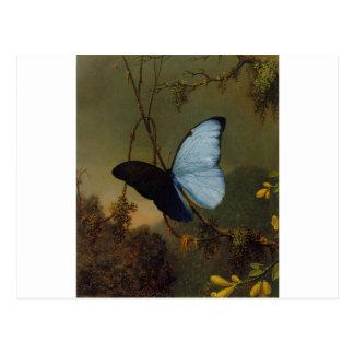 Le ressort bleu du papillon 1865 de Morpho Cartes Postales