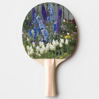 Le ressort fleurit le long d'un chemin de jardin, raquette tennis de table