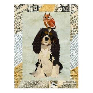 Le Roi Cavalier et carte postale de hibou