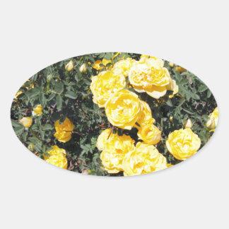 Le rose jaune ensoleillé fleurit l'autobus sticker ovale