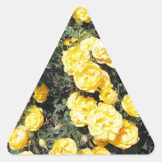 Le rose jaune ensoleillé fleurit l'autobus sticker triangulaire