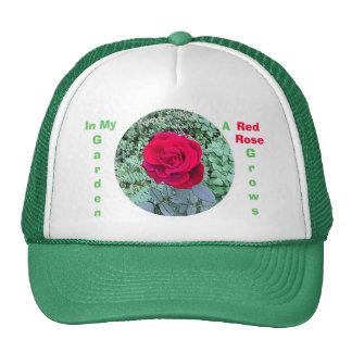 Le rose rouge se développe dans mon casquette de