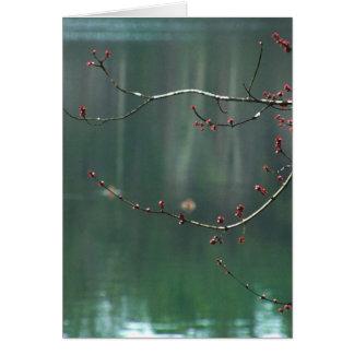 Le rouge de ressort bourgeonne la carte de note de
