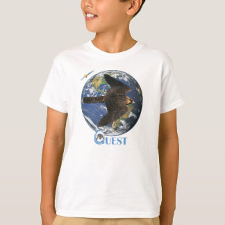 Le satellite de recherche badine la pièce en t t-shirt